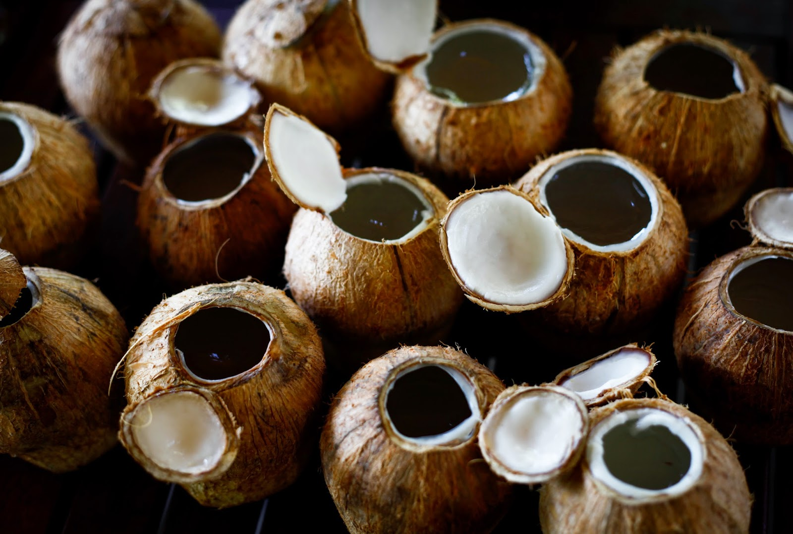 Coconut Jelly Recipe Rau Cau Dua And Our Holiday With