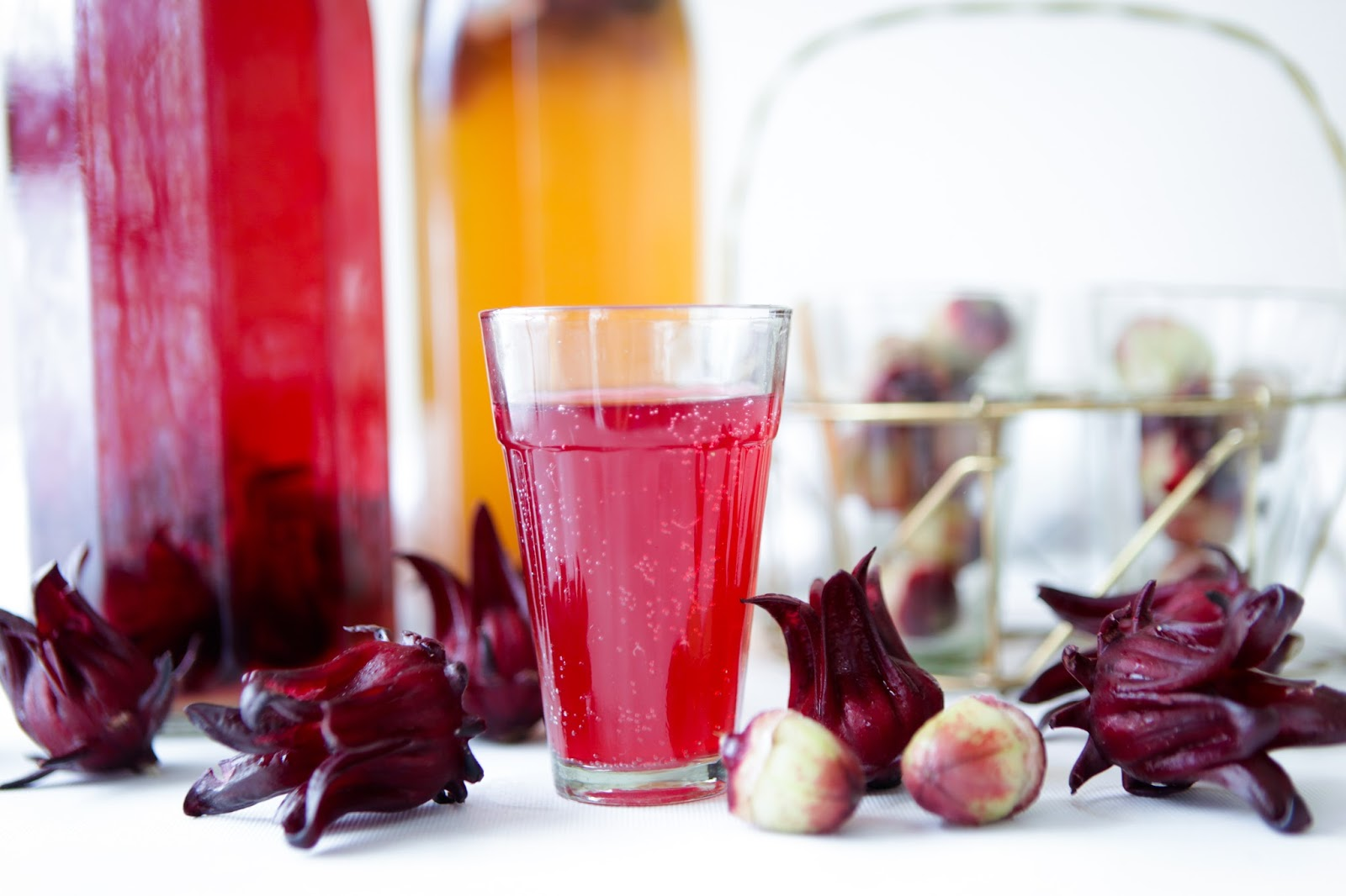 Fresh Hibiscus Kombucha Tea Recipe